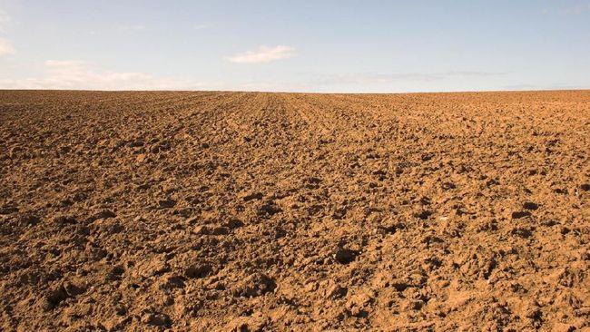 Hasil analisis peneliti Univetsitas Brawijaya menyatakan wilayah Malang Raya dalam kurun waktu sekitar 3 tahun mengalami penurunan muka tanah hampir tiga meter.