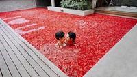 <p>Momen berenang dipenuhi bunga warna merah. Meleleh banget deh jadinya. (Foto: Hastriadi Ragil melalui Instagram @ardinarasti6)</p>