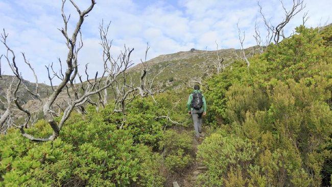 7 Cara Menerapkan Wisata Ramah Lingkungan