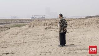 Walhi Kritik Anies: Beri IMB Pulau D Kini Hidupkan Reklamasi