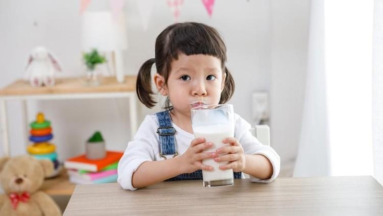 Gizi yang terkandung dalam susu bisa membantu meningkatkan kesehatan anak. Bunda tengok yuk penjelasannya.