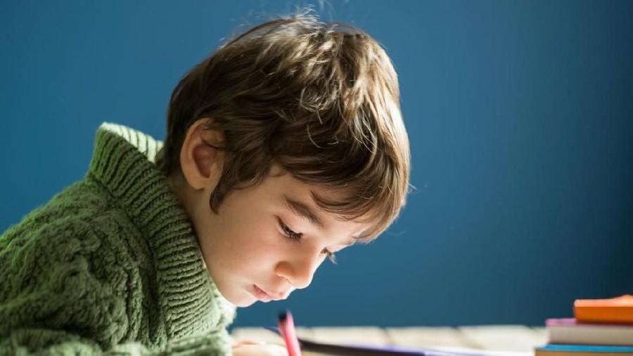 5 Asupan yang Bisa Bantu Tingkatkan Konsentrasi Anak