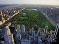 RS Darurat Corona Dibangun di Central Park New York