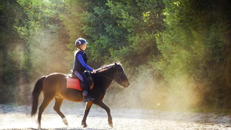 Menunggang kuda memiliki manfaat untuk anak baik dari segi kesehatan maupun psikologis, Bun. Apa saja ya?
