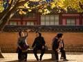 Nunchi, Cara Orang Korea 'Membaca' Pikiran Lawan Bicara