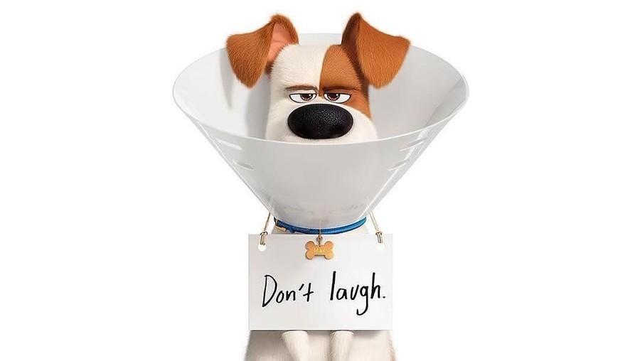 'The Secret Life of Pets 2' Rajai Box Office Amerika Pekan Ini