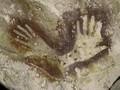 FOTO: Lukisan Batu Tertua di Dunia Ditemukan di Kalimantan