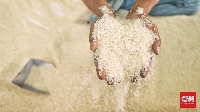 Buruh membongkar beras di Pasar Induk Beras Cipinang, Jakarta Timur (8/11).( CNN Indonesia/ Hesti Rika)