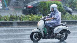Cara Aman 'Biker' Berkacamata Berkendara Saat Hujan