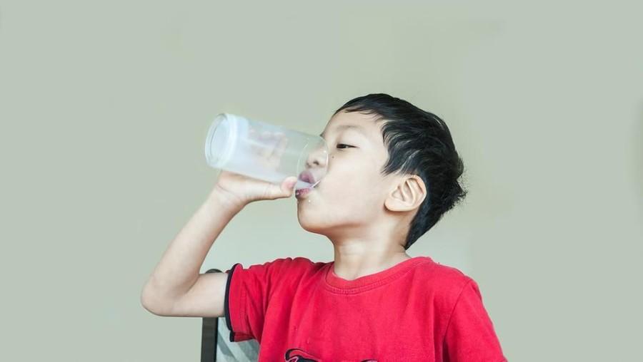 Saran dalam Memilih Susu untuk Anak yang Alergi Susu Sapi