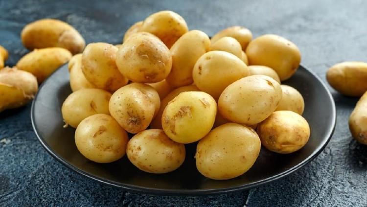 Kentang bisa tetap segar dan tahan lama jika penyimpanannya benar, Bun. Berikut 6 cara menyimpan kentang agar tetap segar.