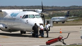 Rencana 'Terbang' Merpati Masih Tunggu Restu Kementerian BUMN