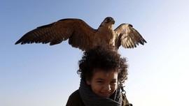 FOTO: Ajang Kumpul Pecinta Elang di Mesir