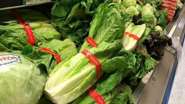 (FILES) In this file photo taken on May 2, 2018, Romaine lettuce is displayed at a grocery store in San Anselmo, California. - US health officials warned consumers on November 20, 2018, not to eat any romaine lettuce and to throw away any they might have in their homes, citing an outbreak of E. coli poisoning. The Centers for Disease Control and Prevention (CDC) issued the warning against all Romaine lettuce just two days before the Thanksgiving holiday, when American families gather and feast together. (Photo by JUSTIN SULLIVAN / GETTY IMAGES NORTH AMERICA / AFP)