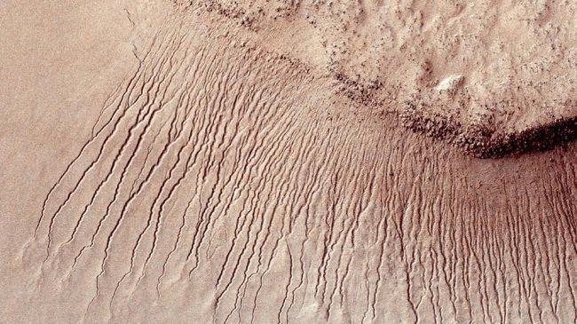 Lembaga Antariksa Amerika Serikat (NASA) mengundang masyarakat dari seluruh dunia untuk 'menyetor' nama untuk misi penjelajaan Mars 2020.