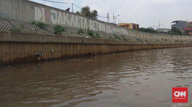 Direktur Rujak Center for Urban Studies Elisa Sutanudjaja menilai konsep zero run off atau menampung air hujan lebih baik ketimbang membeton Sungai Ciliwung.