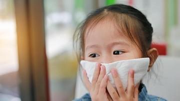 Penyebab Beberapa Alergen Bisa Timbulkan Reaksi Alergi Sama
