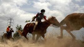 FOTO: Pacu Kuda di Jenepoto