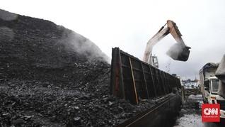 Masyarakat Sipil Sebut Revisi UU Minerba Sisakan Masalah