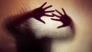 Kepala P2TP2A Lamtim Tersangka Pemerkosaan di Rumah Aman