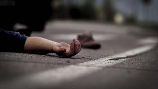 Polisi di Selandia Baru Ditembak Mati, Pertama Sejak 2009