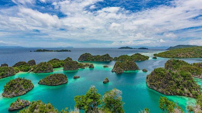 Keberadaan lima 'surga ikan' di Raja Ampat, Papua Barat, disebut tak lepas dari tradisi masyarakat adat untuk menjaga laut, salah satunya tradisi sasi.