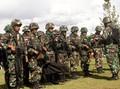 Kontak Tembak TNI-KKB Terjadi di Papua Jelang HUT OPM