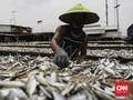 Investor Jepang Incar Perikanan Sulawesi Selatan