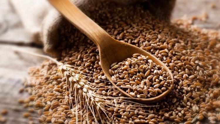 Mengonsumsi gandum utuh sangat bermafaat bagi kesehatan. Bisa mengurangi risiko stroke lho, Bun.