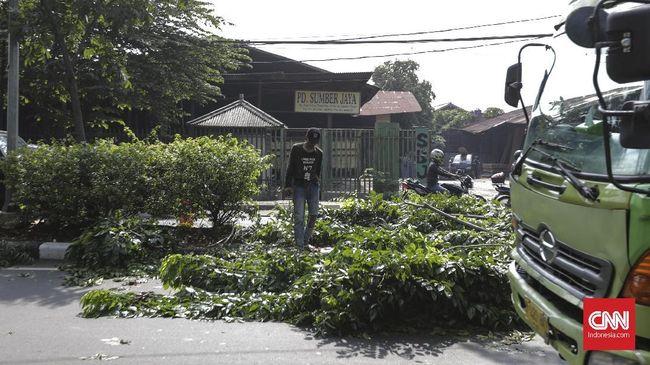 Sejumlah pohon tumbang mengakibatkan mobil dan bangunan rusak.