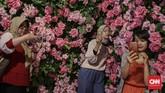 Bagi yang 'haus' akan kegiatan selfie, sedang ada pameran di Jakarta yang sangat Instagram-able.