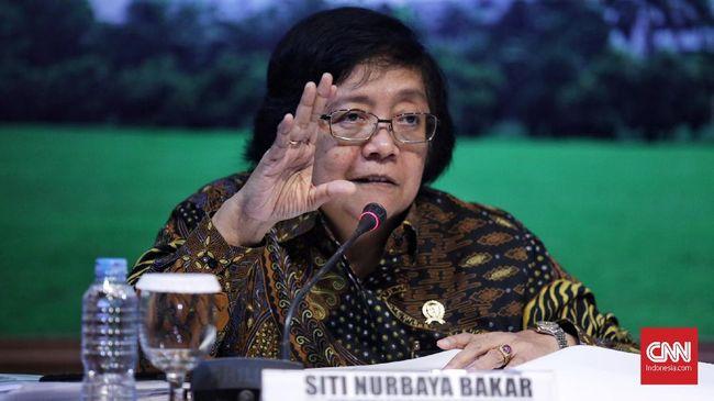 Menteri LHK Siti Nurbaya membantah banjir Kalsel disebabkan oleh faktor penurunan luas hutan di Daerah Aliran Sungai (DAS) Barito.