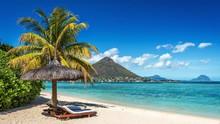 Laut Mauritius Ternodai Bencana Tumpahan Minyak Terbesar