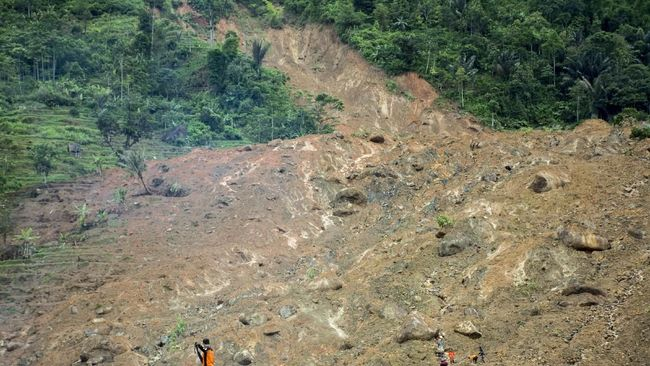 Untuk menanggulangi longsor, Presiden Jokowi menyarankan BNPB dan semua pihak untuk menanam tumbuhan Vetiver, bukan Vety Vera.