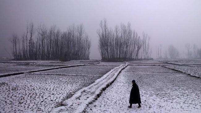 Dalam foto-foto unik pilihan CNNIndonesia.com pekan ini, ada kisah perayaan tahun baru dari berbagai negara, musim dingin di India, dan para imigran Meksiko.