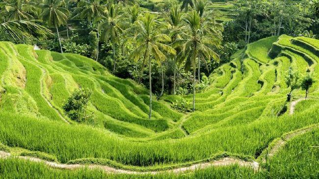Seorang pegiat ekowisata di Indonesia, Krystyna Krassowska, menuturkan pariwisata berkelanjutan adalah investasi sekaligus solusi jangka panjang bagi Indonesia.