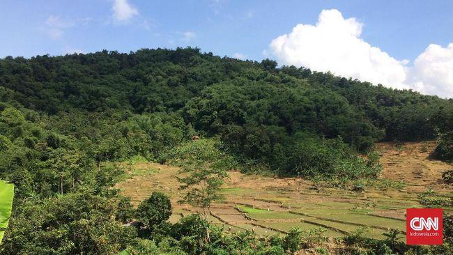 Pendafataran ke UNESCO ini adalah salah satu upaya untuk melindungi Pegunungan Meratus dari pengerusakan sumber daya alam