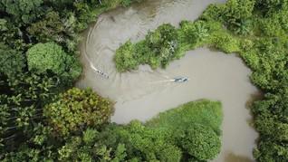 Oprah Winfrey Minta Penduduk Indonesia Rawat Ekosistem Leuser