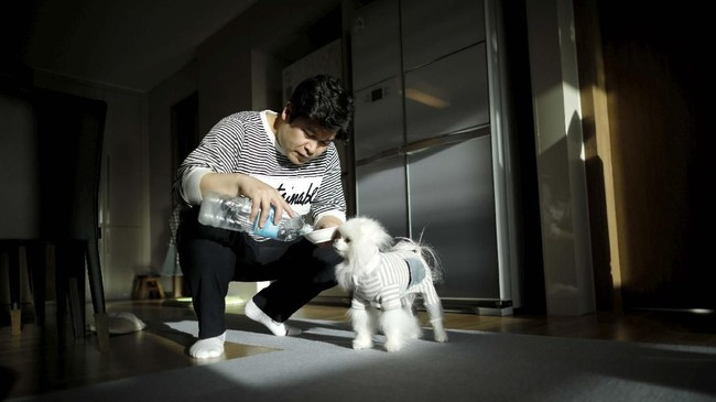 Pasangan suami-istri di Korea Selatan ternyata lebih memilih untuk punya anjing peliharaan dibanding dengan punya anak.