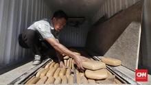 Tangkap Jaringan Sukabumi-Aceh, Polisi Sita Ganja 14,5 Kg