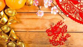 Shio Paling Hoki di Tahun Babi Tanah