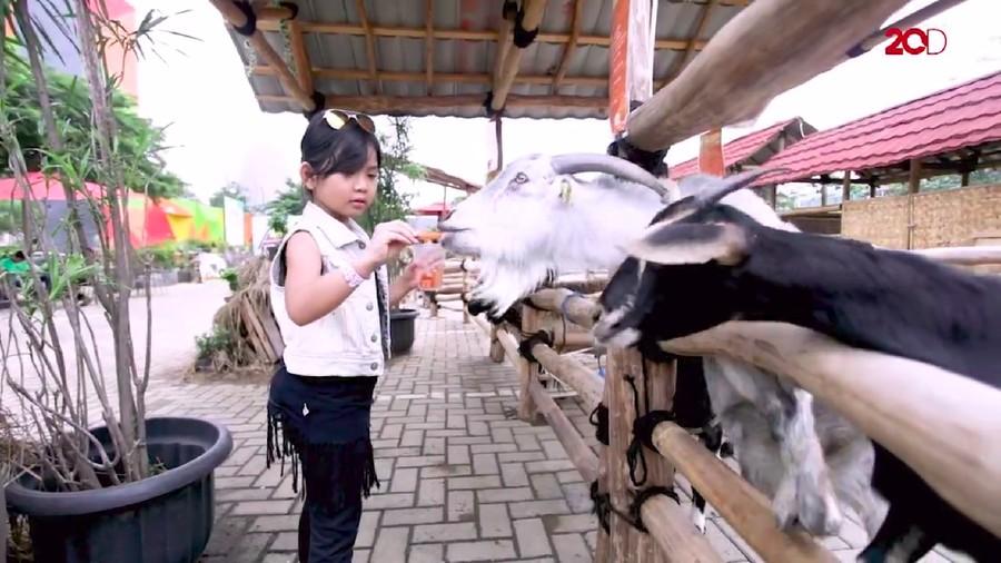 AnakPedia! Serunya Kenalkan Kegiatan Alam pada Anak Sejak Dini