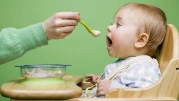 MPASI Pertama Anak, Buah-buahan atau Serealia dan Daging?