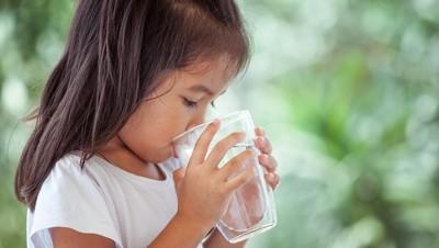 Anak yang Minum Sedikit Air Putih Lebih Berisiko Obesitas
