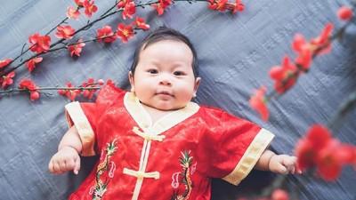 Karakter Anak yang Lahir di Tahun Babi Tanah