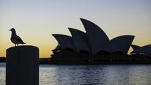 Lepas Resesi, Australia Dibayangi Perang Dagang Lawan China