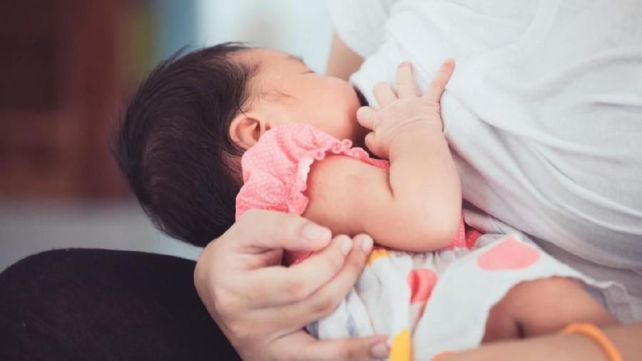 Biarkan Bayi Gigit-gigit Payudara Bisa Kurangi Gumoh?