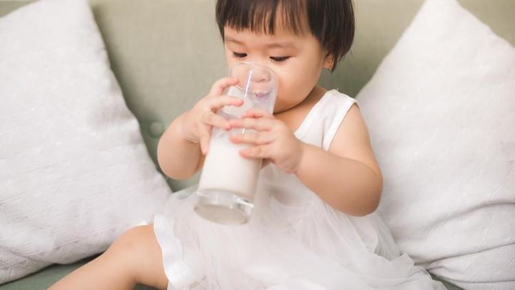 Anak usia 1 tahun biasanya sudah susah disuruh makan. Biasanya orang tua memberikan susu untuk pengganti makanan. Simak panduan memilih susu berikut ini, Bun.