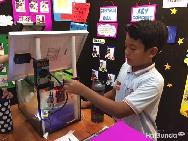 Yuk, intip keseruan PYP Exhibition yang menyuguhkan karya keren anak-anak kelas lima dari Sekolah Cikal Cilandak.