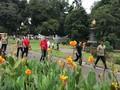 Jelang Debat Kedua, Jokowi Lari Pagi di Kebun Raya Bogor